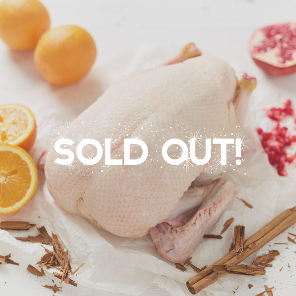 Duck Sold Out